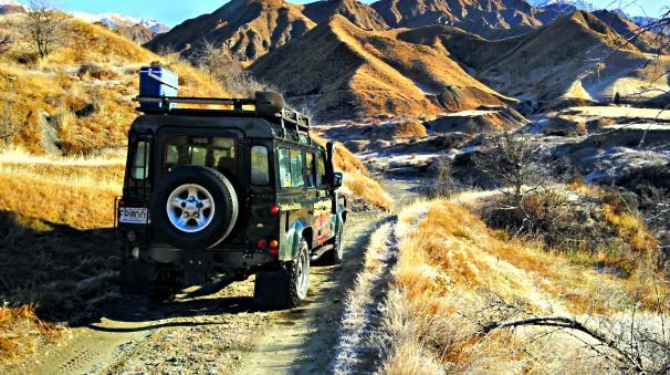 Nomad Safaris Half Day Tours
