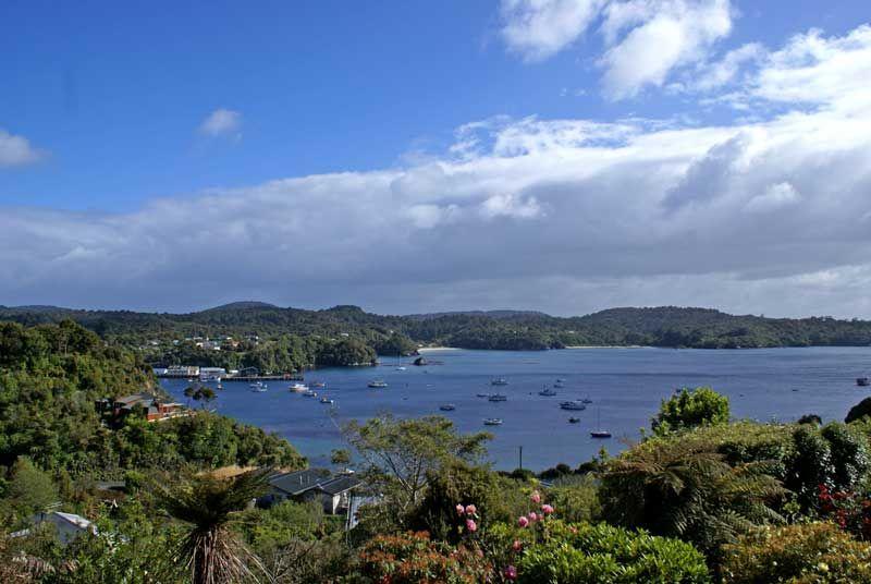 Stewart Island Day Trip