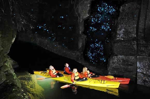Waimarino Glow-worm Kayak Tour