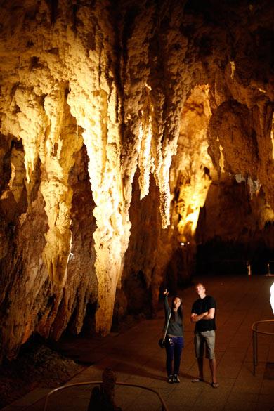 Te Anau Glowworms Tour