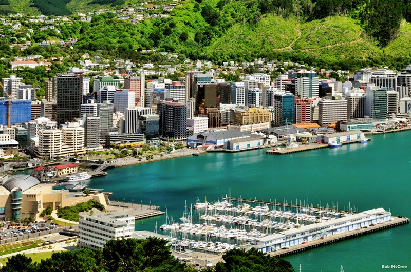 Wellington City Sightseeing NZ Tourismcom