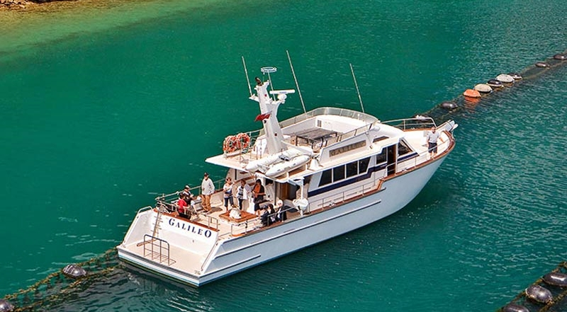 Greenshell Mussel Cruise, photo: marlboroughnz.co.nz